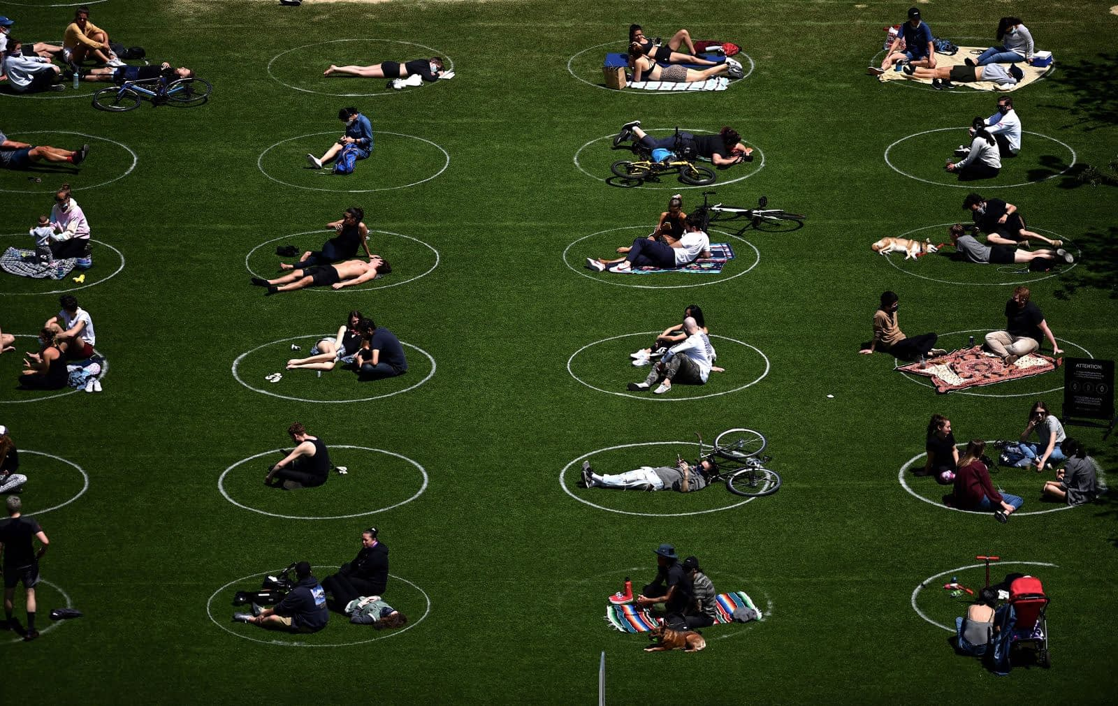 May 17, Domino Park, New York: People practice social distancing in circles drawn on the grass.